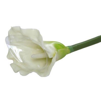 Large Calla Lily Cream & Green