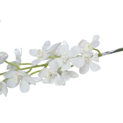 Dainty Orchid Bridal Ivory