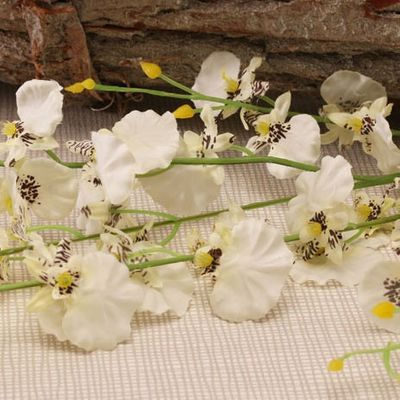 Dancing White Orchid