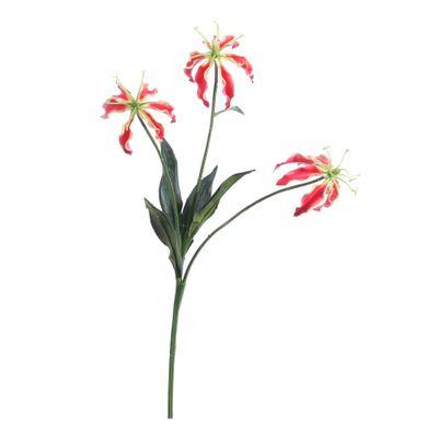 Red Gloriosa Spray [50 cm]