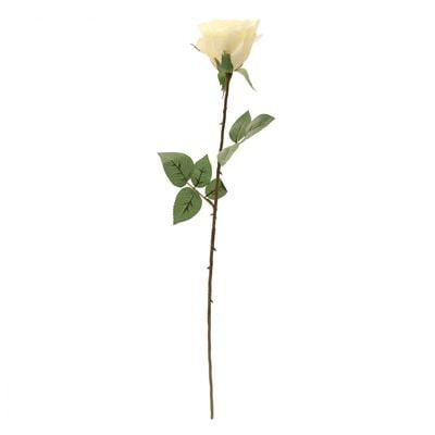 Kaia Rose Stem in Cream