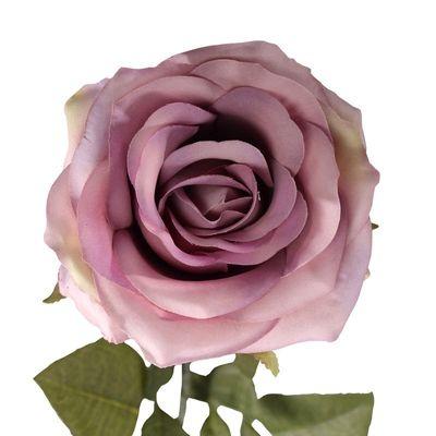 Vintage Lilac Rose