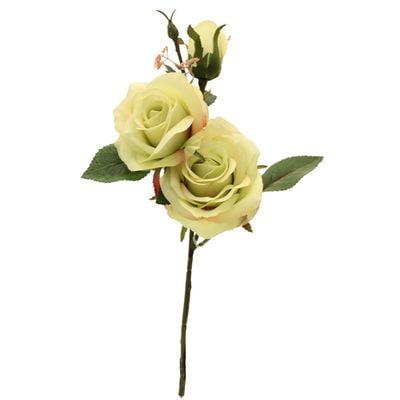 Light Green Paris Rose