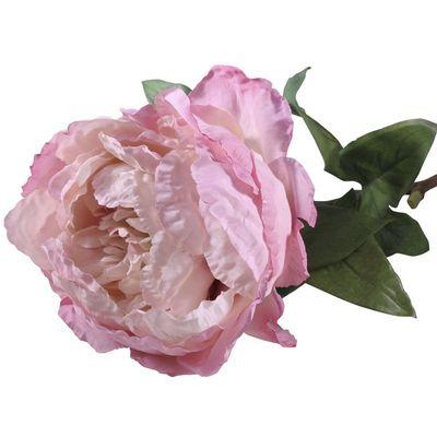 Single Peony Pink [71 cm]