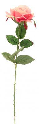 Rose Fuchsia