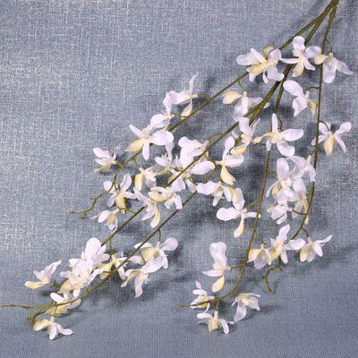 White Oncidium Orchid Spray