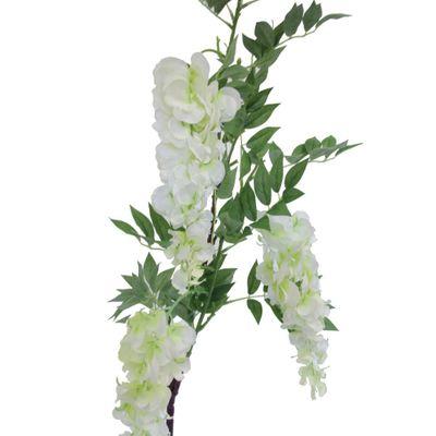 White Wisteria Branch