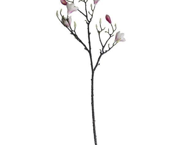 Magnolia Branch Blush Pink