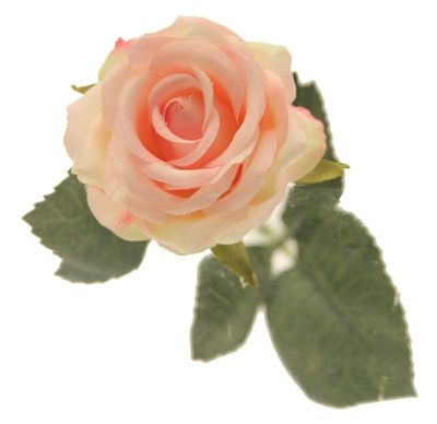 Diamond Rose Light Pink [40 cm]