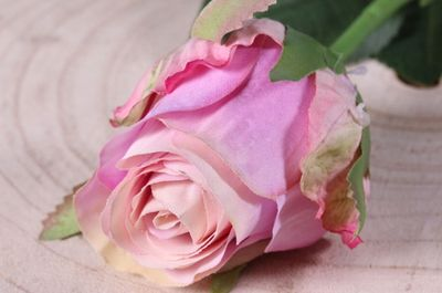 Small Rose Bud Lavender