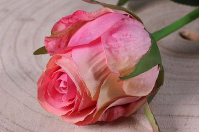 Small Rose Bud Pink
