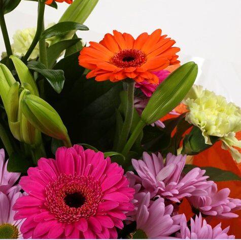 Color Burst Bouquet