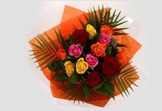 12 Beautiful Roses
