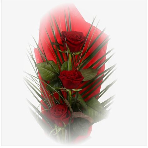 Trio Elegant Red Roses